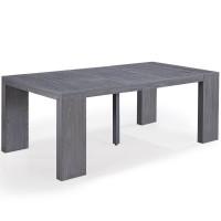 console extensible bois gris 50 250 cm 12 personnes. Black Bedroom Furniture Sets. Home Design Ideas