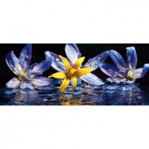 INNOVA Décoration murale Glass'art - 50 x 120 cm - Lillies with water