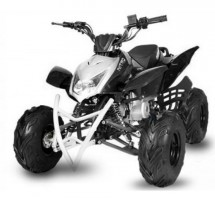 Quad 125cc automatique Jumper RG 7