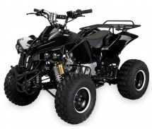 Quad 125cc automatique Warrior e-start 8