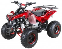 Quad 125cc automatique Panthera e-start 7