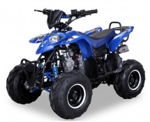 Quad 125cc automatique Razer e-start 6