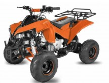 Quad ado 125cc automatique Warrior RG 7