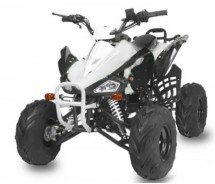 Quad automatique Speedy RG RS 125cc 4 temps Blanc